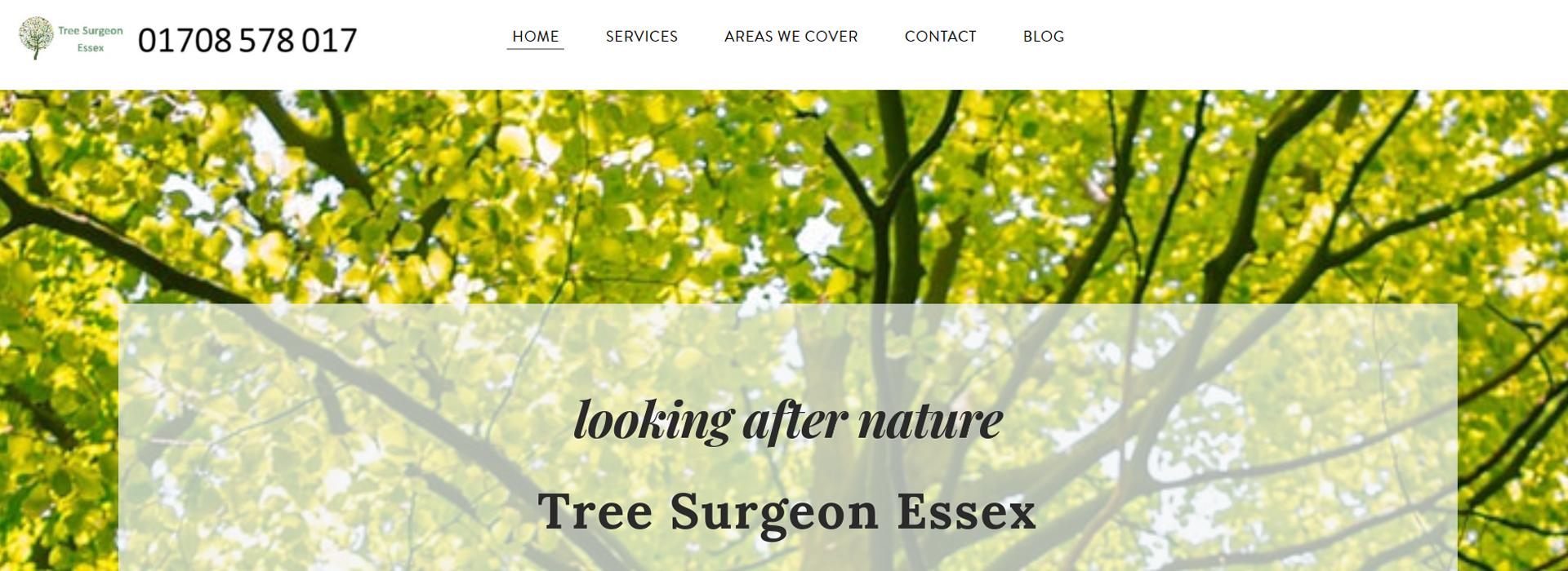 Tree surgeon essex