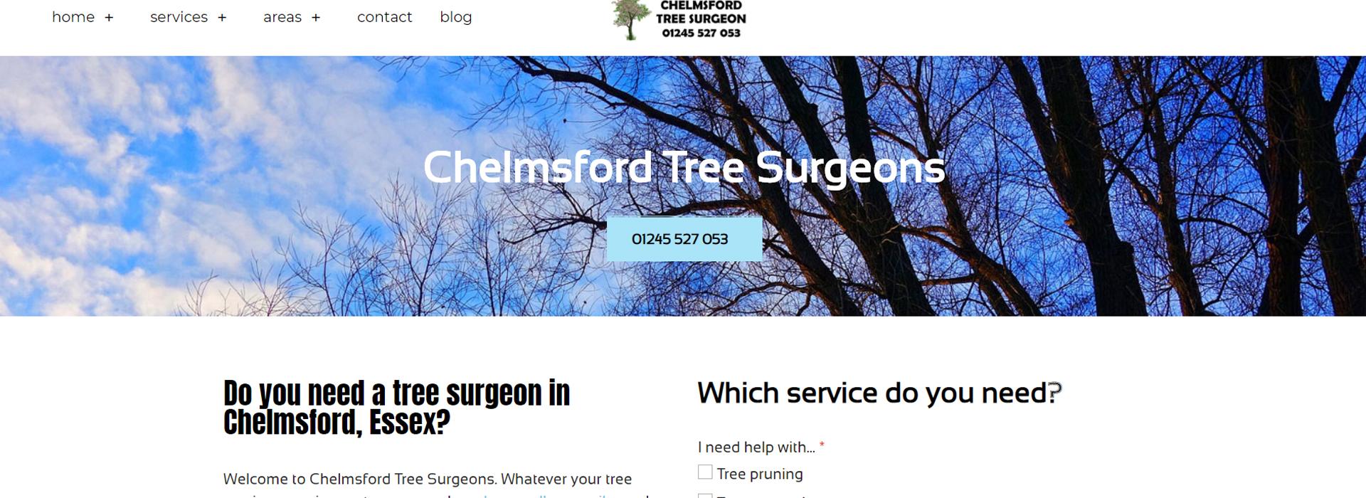 chelmsford tree surgeon